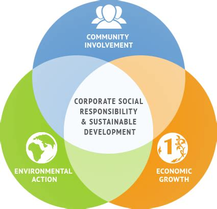 The Future of Social Enterprise - Research Paper by